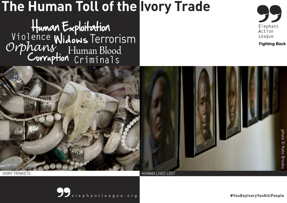 Human Toll Ivory Trade - Campaign ENG2