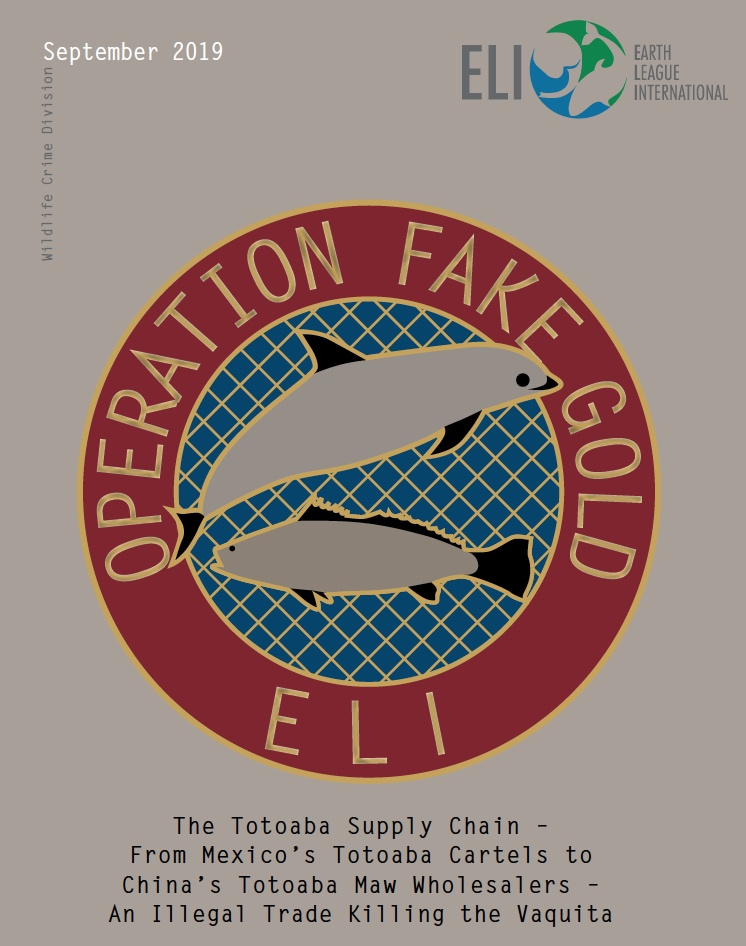 Operation Fake Gold report