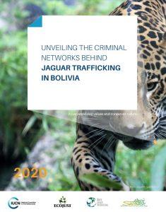 Operation jaguar trafficking bolivia